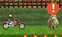 Game đua xe nông trại