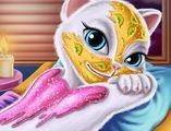 Mèo Angela đi spa