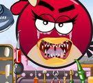 Chữa răng cho Angry Bird