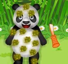 choi game Chăm sóc gấu trúc