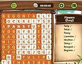 choi game Word Hunter