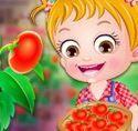 Baby Hazel trồng cà chua