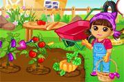 Trồng cây cùng Dora