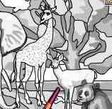Tô màu vườn bách thú