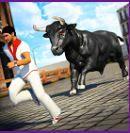 Chạy đua với bò tót
