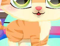 choi game Chăm sóc mèo Kitty dễ thương